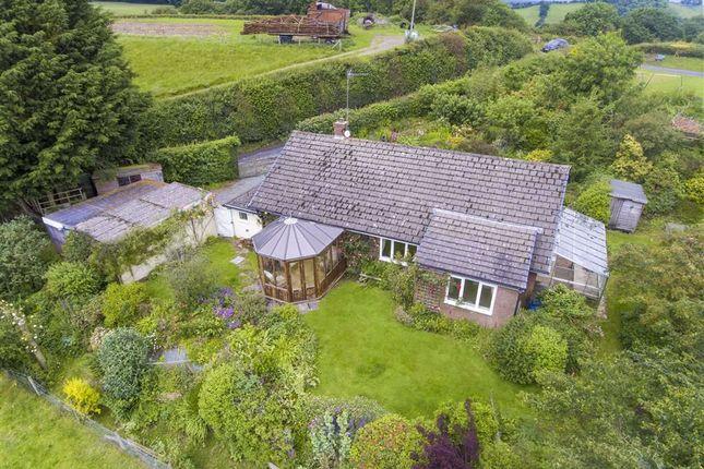 Thumbnail Detached bungalow for sale in Trefnant, Welshpool
