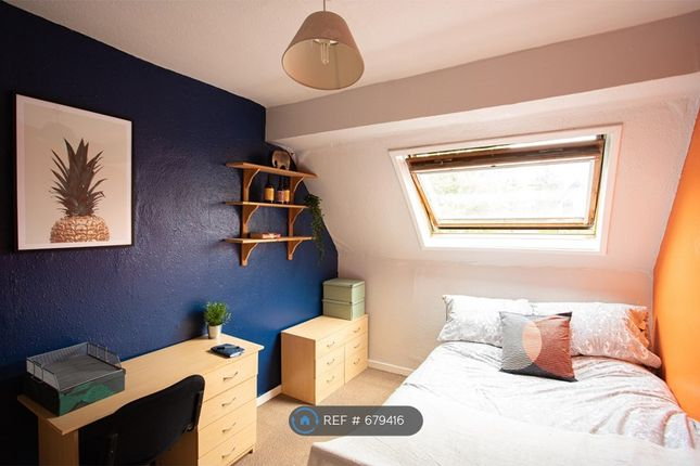 Thumbnail Terraced house to rent in Broomgrove Road, Sheffield