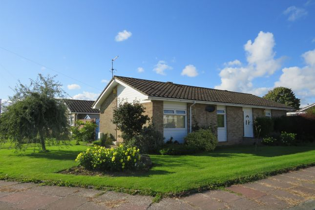 Thumbnail Detached bungalow for sale in Rockingham Close, Worthing
