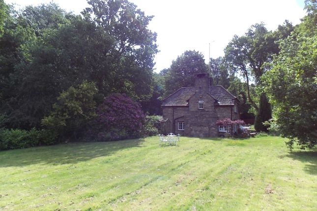 Thumbnail Detached house to rent in Benscliffe Road, Ulverscroft