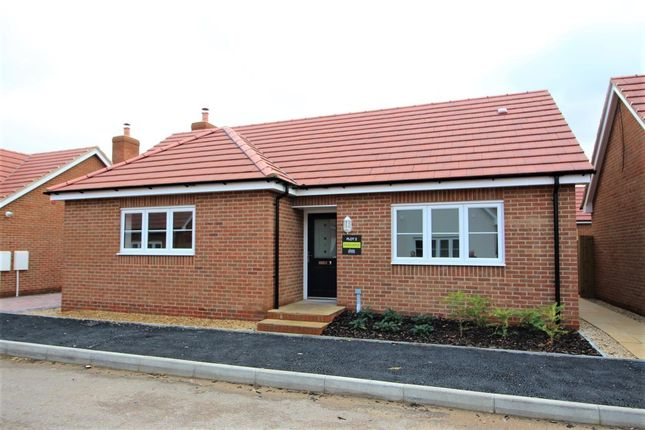 Thumbnail Bungalow for sale in Walnut Close, Blunham, Bedford