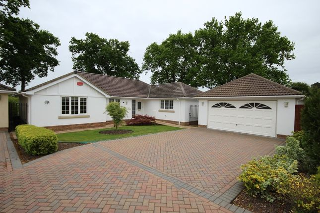 Thumbnail Detached bungalow for sale in Lake Road, Verwood