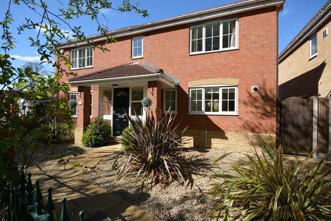 4 bed detached house for sale in Point Cottages, Yarmouth Road, Corton, Lowestoft