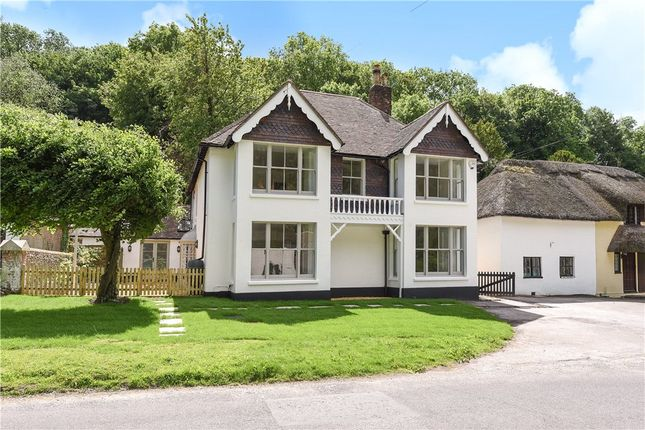 Thumbnail Detached house for sale in Milton Abbas, Blandford Forum