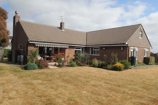 Thumbnail Detached bungalow for sale in Church Road, Elmstead, Colchester