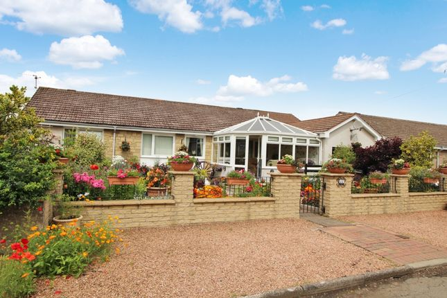 Thumbnail Bungalow for sale in Bankton Park, Kingskettle