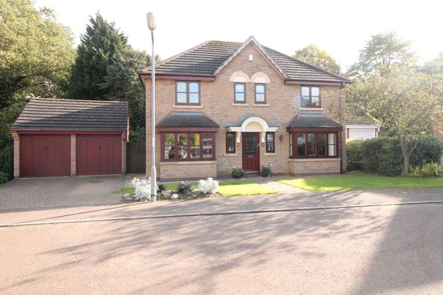 Thumbnail Detached house for sale in Osprey Drive, Daventry