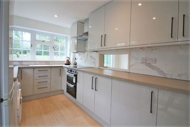 Thumbnail Detached house to rent in Meadow View Road, Exmouth