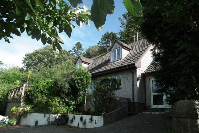 Thumbnail Detached house for sale in West Looe Hill, West Looe, Cornwall