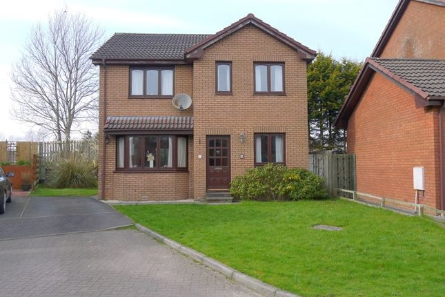 Thumbnail Detached house for sale in Whittle Road, Ayr