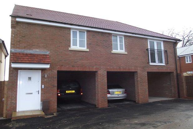 Thumbnail Property to rent in Owen Close, Fareham