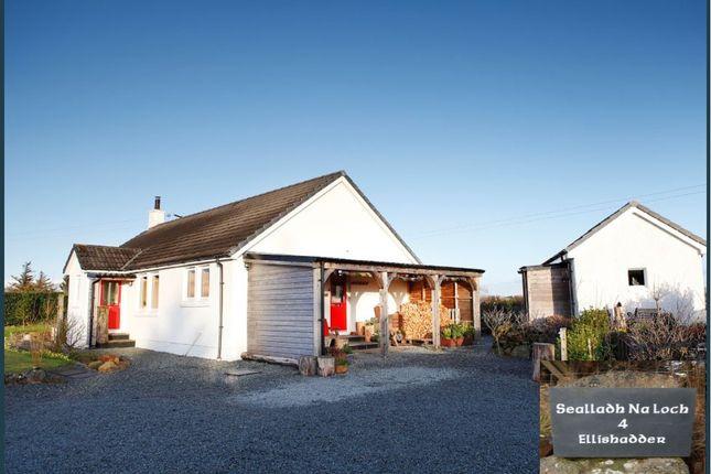 Ellishadder, Staffin, Isle Of Skye IV51