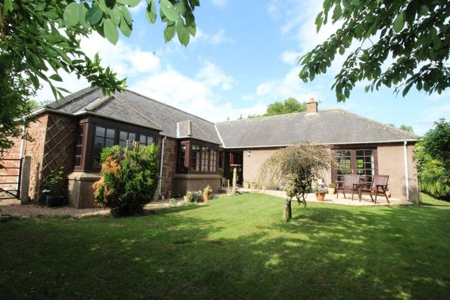 Thumbnail Detached house for sale in Menmuir, Brechin