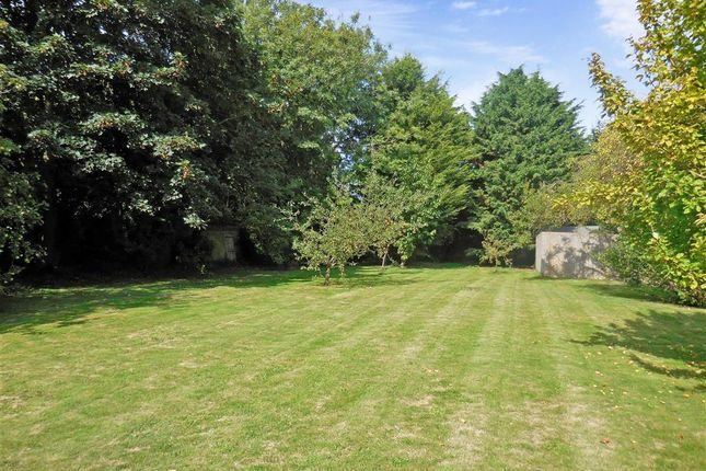 Thumbnail Land for sale in Dover Road, Ringwould, Deal, Kent