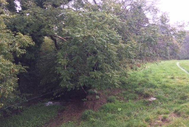 Img_2897 of North Buckland, Braunton EX33