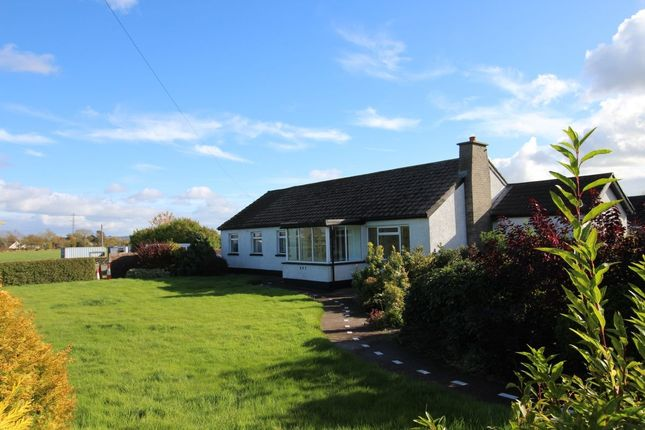 Thumbnail Bungalow for sale in Moira Road, Lisburn