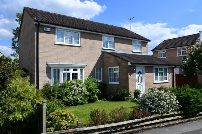 Thumbnail Detached house for sale in Westminster Close, Shaftesbury