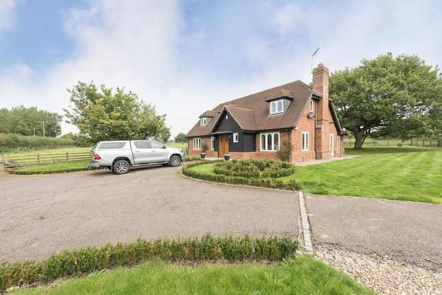 Thumbnail Detached house to rent in St. Albans Road, Redbourn, St.Albans