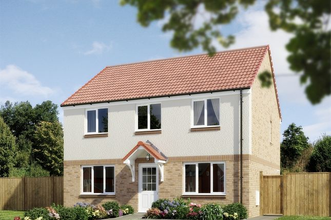 "Thumbnail 4 bedroom detached house for sale in ""The Ettrick"" at Grosset Place, Glenrothes"