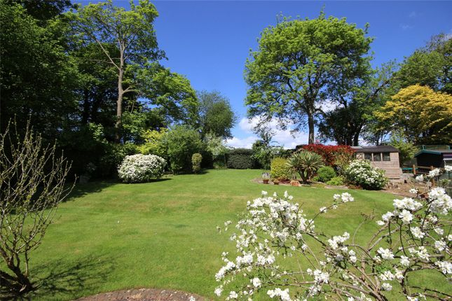 Thumbnail Detached house for sale in Wellhouse Road, Beech, Alton, Hampshire