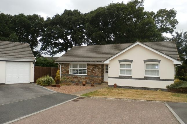 Thumbnail Detached bungalow to rent in Primrose Gardens, Tavistock