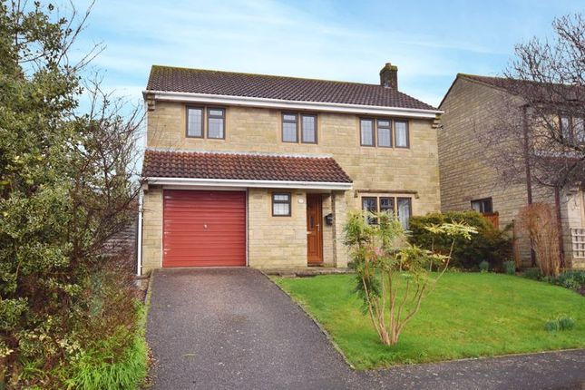 Thumbnail Detached house for sale in Abbey Close, Curry Rivel, Langport
