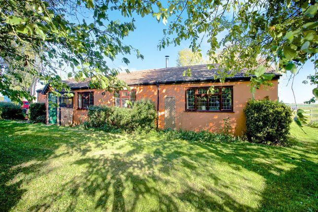 Thumbnail Bungalow to rent in Hook Road, Wimblington, March