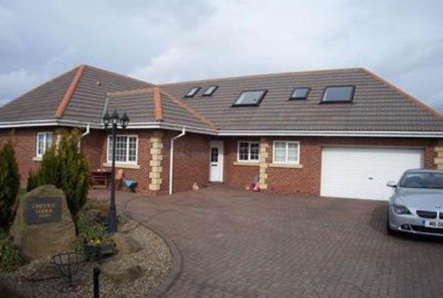Thumbnail Bungalow to rent in Woodhorn Court, Ashington