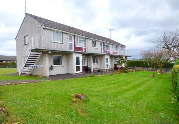 Thumbnail Flat to rent in Chestnut Court, Stainton, Penrith