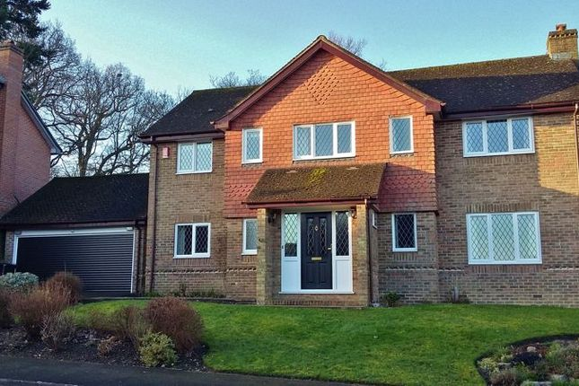 Thumbnail Detached house for sale in Bocking Close, Wadhurst