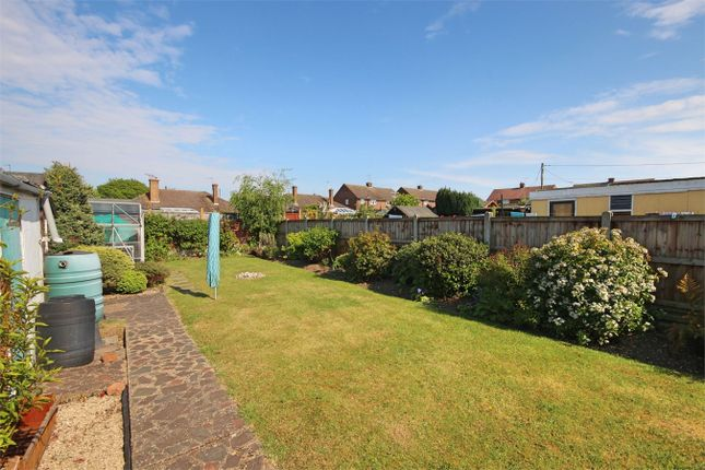 Thumbnail Semi-detached bungalow for sale in Cornwall Gardens, Braintree