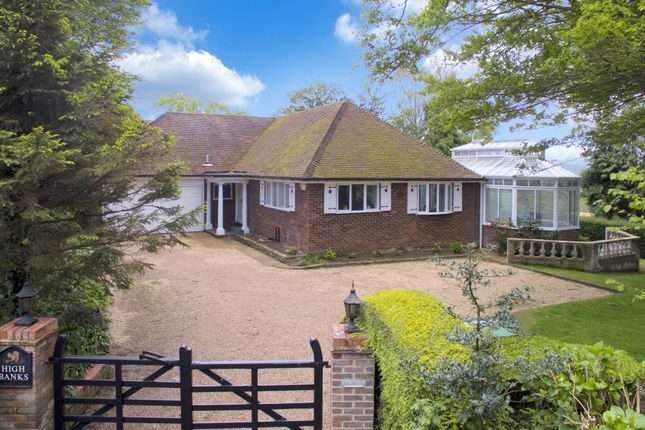 Thumbnail Detached bungalow for sale in Brede Hill, Brede, Rye