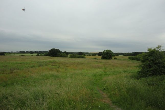 Thumbnail Land for sale in Land (32.86 Acres) Huddocks Moor Farm, Off Norton Road, Pelsall, Walsall