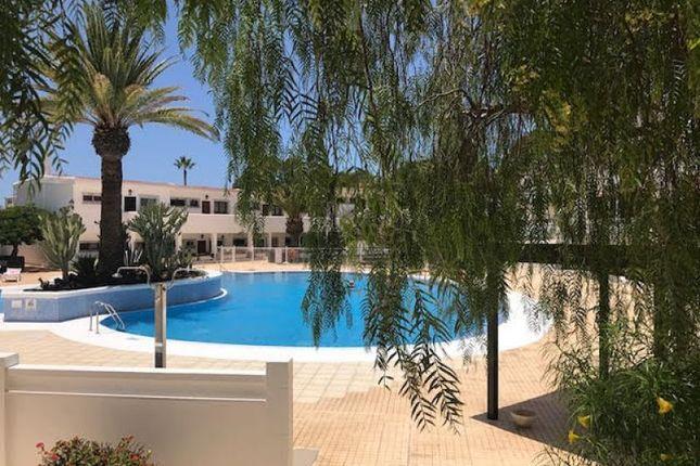 Los cristianos el paso spain 2 bedroom apartment for for The garden pool el paso