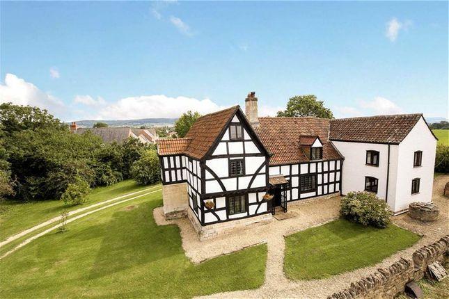 Thumbnail Detached house for sale in Bath Road, Eastington