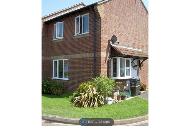 Thumbnail Semi-detached house to rent in Thames Drive, Taunton