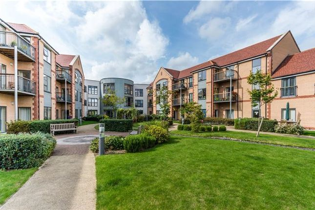 Thumbnail Property for sale in Abbeyfield, Girton, Cambridge