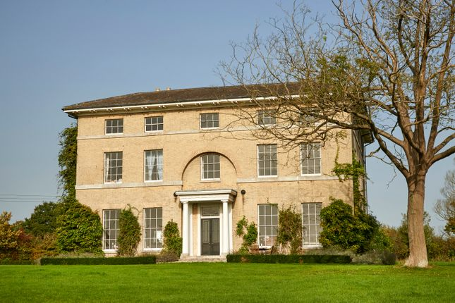 Thumbnail Detached house for sale in London Road, Shadingfield, Beccles