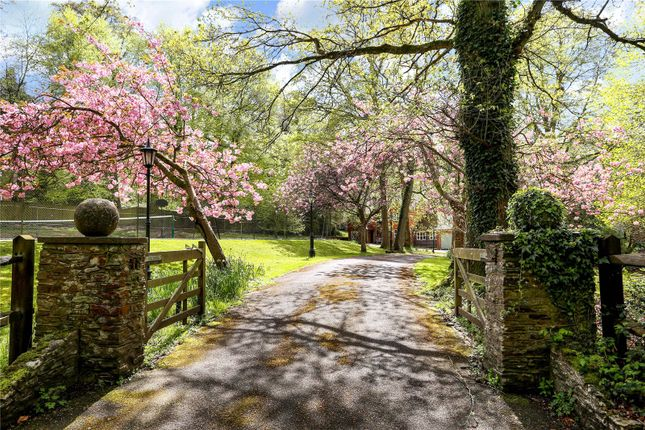 Thumbnail Detached house for sale in Hatch Lane, Liss, Hampshire