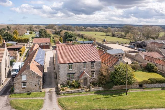 Thumbnail Detached house for sale in Newton-On-Rawcliffe, Pickering