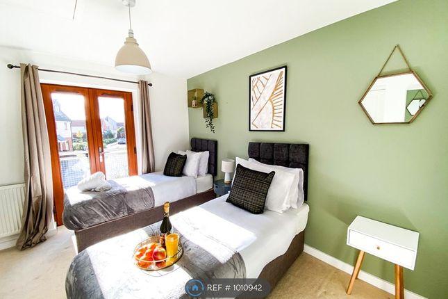 Thumbnail Semi-detached house to rent in Poppy Avenue, Broughton, Milton Keynes