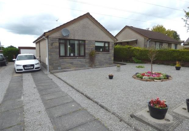 Thumbnail Detached bungalow for sale in Monro Avenue, Dumfries, Dumfries And Galloway