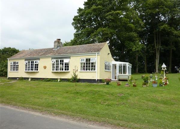 Thumbnail Detached bungalow for sale in Valley Cottage, The Avenue, East Ravendale, Near Grimsby