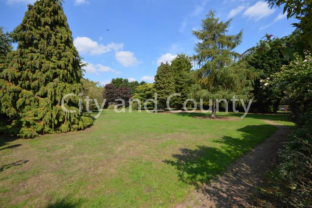 Thumbnail Detached bungalow for sale in Oxney Road, Peterborough