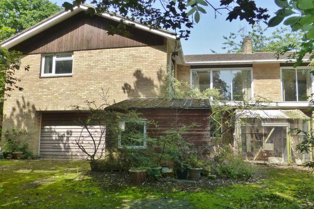 Thumbnail Detached house for sale in Peterborough Avenue, Oakham