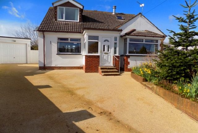 Thumbnail Detached bungalow for sale in Luscombe Close, Ipplepen, Newton Abbot