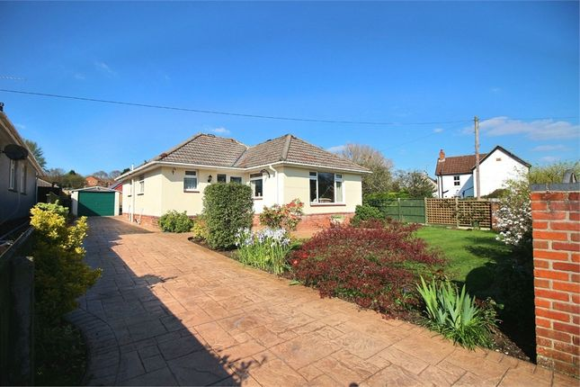 Thumbnail Detached bungalow for sale in Witchampton Road, Broadstone, Dorset