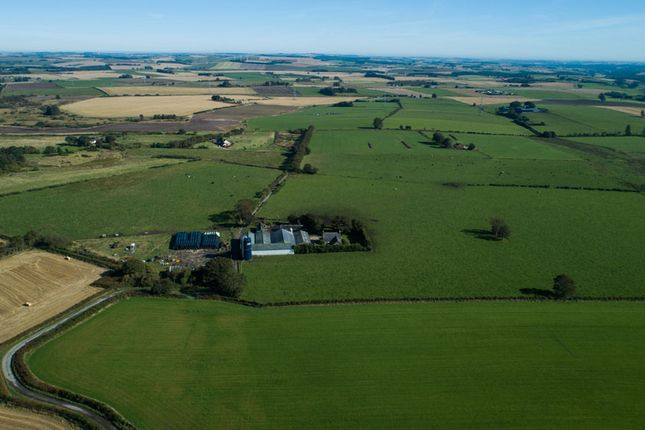 Thumbnail Farm for sale in Millbrex, Fyvie, Turriff