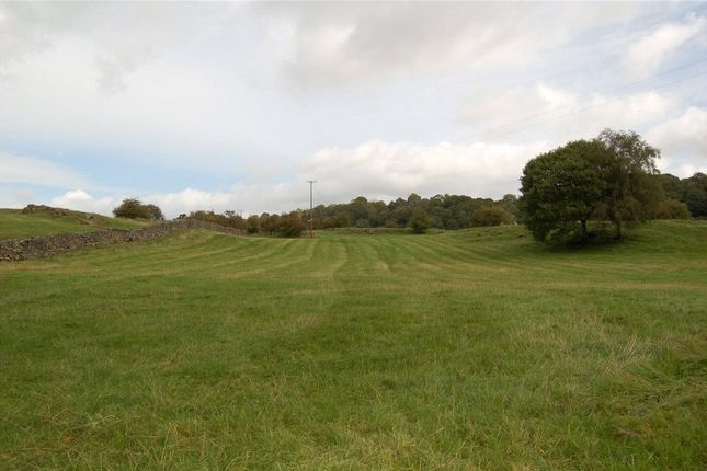 Thumbnail Land for sale in Meadow & Pasture - Lot 2, Thorns Lane, Underbarrow, Kendal, Cumbria