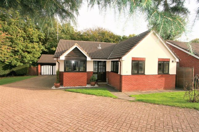 Thumbnail Detached bungalow for sale in Enid Close, Bricket Wood, St. Albans